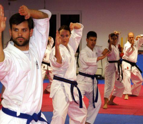 Allenamento al Karate