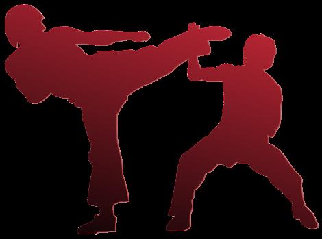 Allenamento nelle Arti marziali